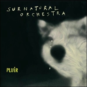 Photo of Surnatural Orchestra – Pluir