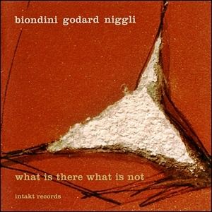 Photo of Biondini-Godard-Niggli – What is There What is Not